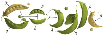 Google doodle Gregor Mendel