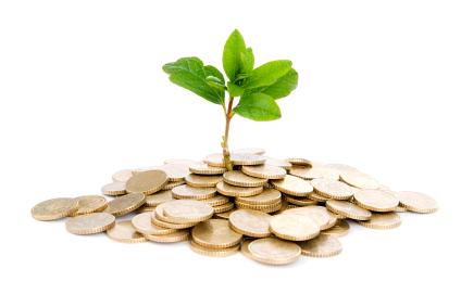 Venture Capital - startup