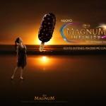 Magnum Infinity