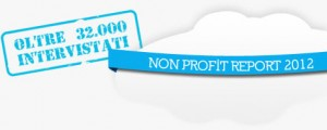 non profit report 2012