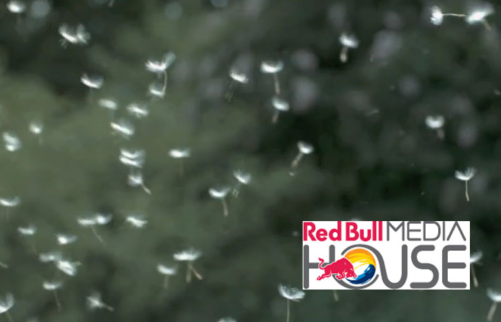 Red Bull Media House, nuova collezione video su Getty Images