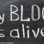 Indagine-Blog-Italia
