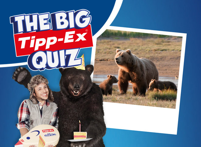 Cacciatore-Orso-Tippex-Quiz