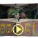 Il doodle di Google è con la Strega di Halloween, tranne in Italia