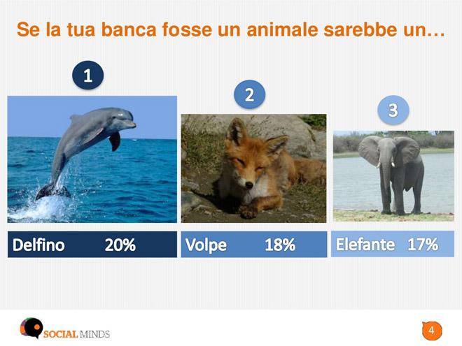 social-media-banche-animale