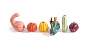 google-doodle-autunno-2015