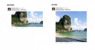 twitter layout immagini